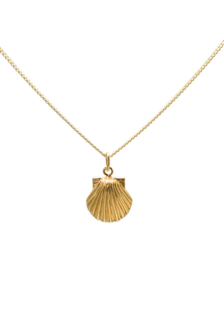 blue billie: Seashell Gold Plated Necklace