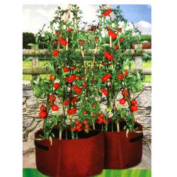 Tomato Patio Planter, 2-pack