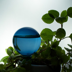 BLOMBEVATTNARE - blå